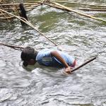 Anak Memanah Ikan