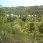 Desa Kajulangko 2